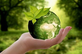 L'écologie et la naturopathie